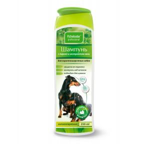 Шампунь Пчелодар Professional с пергой и хвоей для короткошерстных собак 250 мл