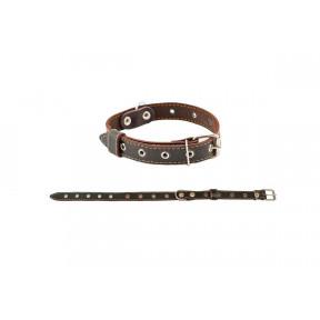 Ошейник для собак Дарэлл Стандарт кожаный 44 см, коричневый