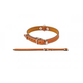 Ошейник для собак Дарэлл Стандарт кожаный 44 см, рыжий
