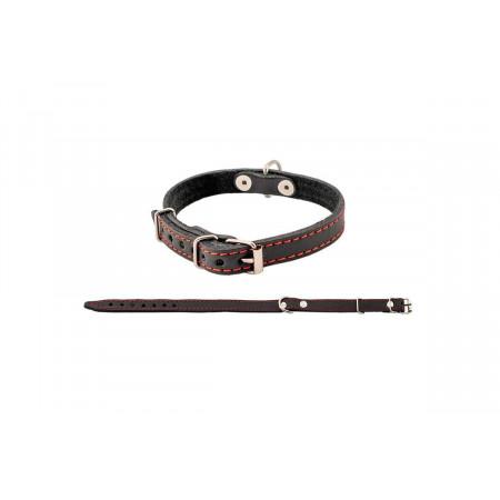 Ошейник для собак Дарэлл Стандарт кожаный 44 см, черный