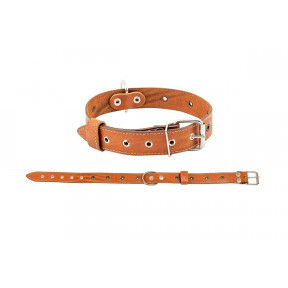 Ошейник для собак Дарэлл Стандарт кожаный 62 см, рыжий