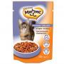 Влажный корм для кошек Мнямс Чувствительное пищеварение, с ягненком (кусочки в соусе) 100 г