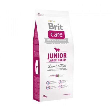 Сухой корм для щенков BRIT Care Junior Large Breed ягненок с рисом (для крупных пород) 12 кг