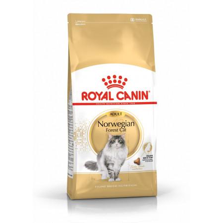 Сухой корм для Норвежских лесных кошек Royal Canin Norwegian Forest Adult мясное ассорти 2 кг