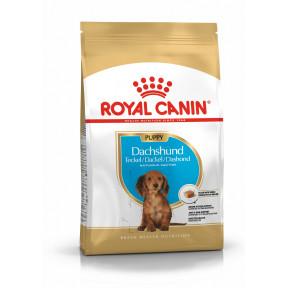 Сухой корм для щенков Такс Royal Canin Dachshund Puppy для собак до 10 месяцев 1.5 кг