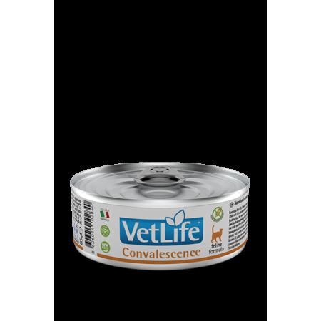 Влажный корм для кошек Farmina Vet Life Convalescence беззерновой, в период восстановление после болезни, паштет 85 г