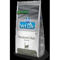 Сухой корм для Кастрированных Котов Farmina Vet Life Neutered Male 10 кг