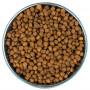 Сухой корм для стерилизованных кошек и кастрированных котов Wellness CORE Sterilized беззерновой, с курицой с индейкой 1.75 кг