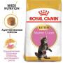 Сухой корм для котят Мейн-кунов Royal Canin Maine Coon Kitten 4 кг
