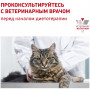 Сухой корм для кошек Royal Canin Renal Special 2 кг