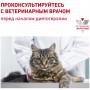 Сухой корм для кошек Royal Canin Urinary S/O для лечения МКБ 3.5 кг