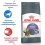 Сухой корм для стерилизованных кошек Royal Canin Appetite Control Care для профилактики избыточного веса 3.5 кг