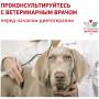 Влажный корм для собак Royal Canin Gastrointestinal при болезнях ЖКТ 400 г