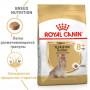Сухой корм для пожилых Йоркширских Терьеров Royal Canin Yorkshire Terrier Adult 8+ (для мелких пород) 1.5 кг