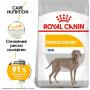 Сухой корм для собак Royal Canin Maxi Dermacomfort для здоровья кожи и шерсти (для крупных пород) 10 кг