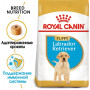 Сухой корм для щенков Лабрадора Royal Canin Labrador Retriever Puppy для собак до 15 месяцев 12 кг