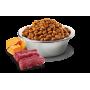 Сухой корм для кошек Farmina N&D Pumpkin беззерновой, с олениной, с тыквой, с яблоком 5 кг
