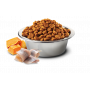 Сухой корм для собак Farmina N&D Ocean беззерновой, с треской, с тыквой, с апельсином (для мелких пород) 7 кг