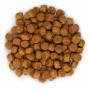 Сухой корм для щенков Hill's Science Plan, с курицей (для средних пород) 12 кг