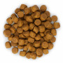 Сухой корм для щенков Hill's Science Plan, с ягненком и рисом (для средних пород) 12 кг
