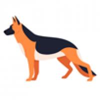 Для собак крупных пород