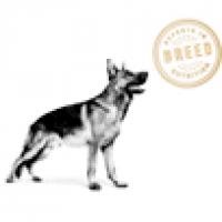 Определенные породы собак