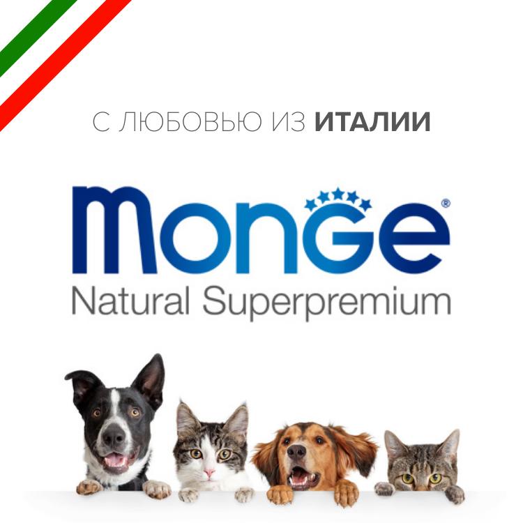 Monge banner